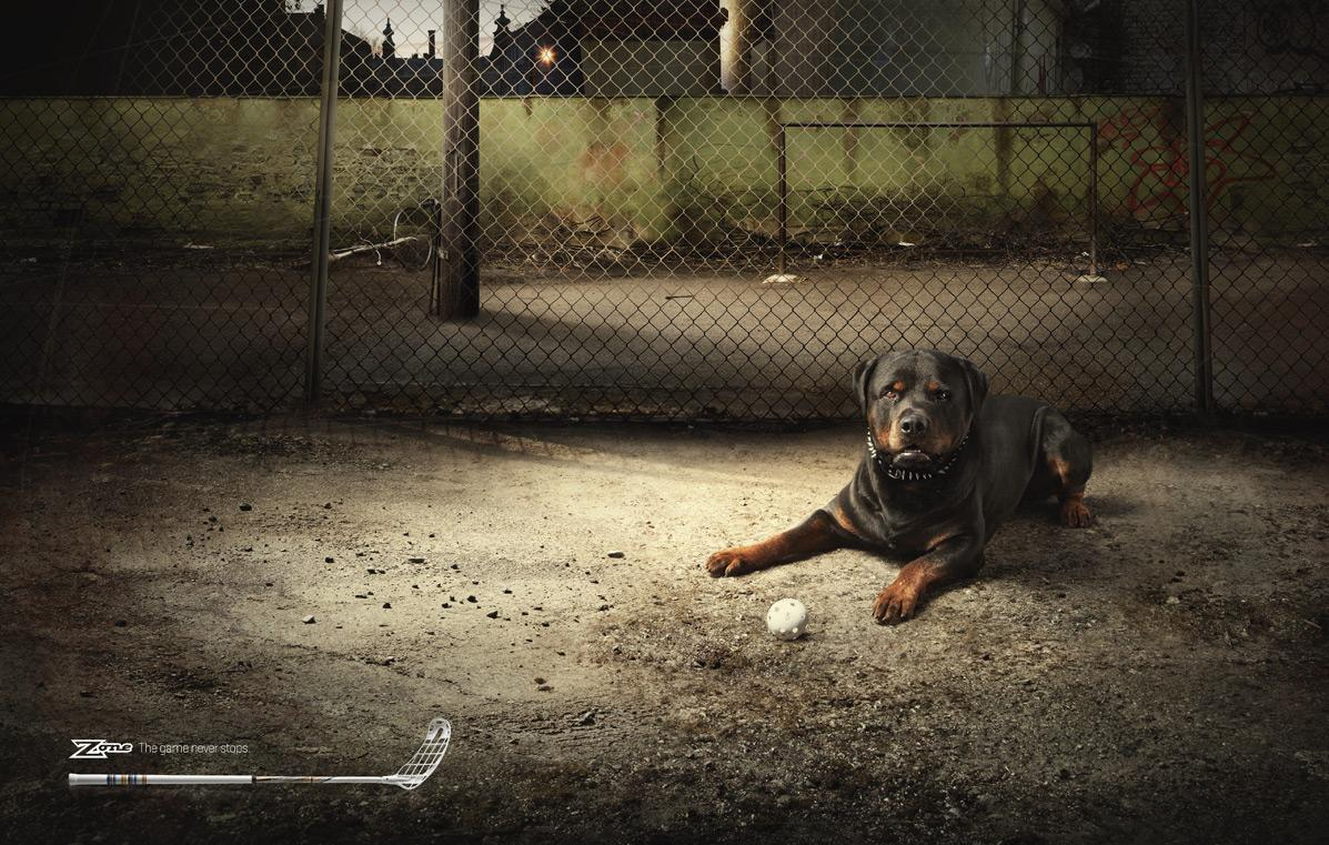 Zone Print Ad -  Dribble dog
