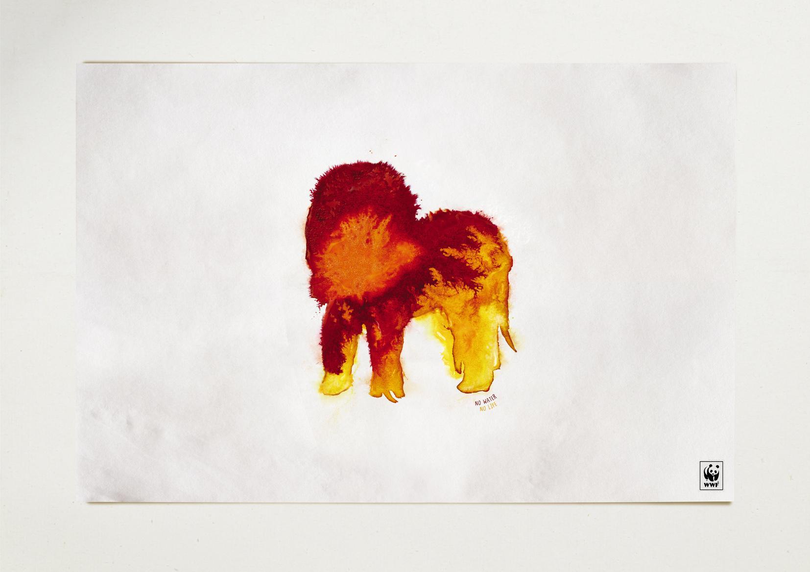 WWF Print Ad -  Lion