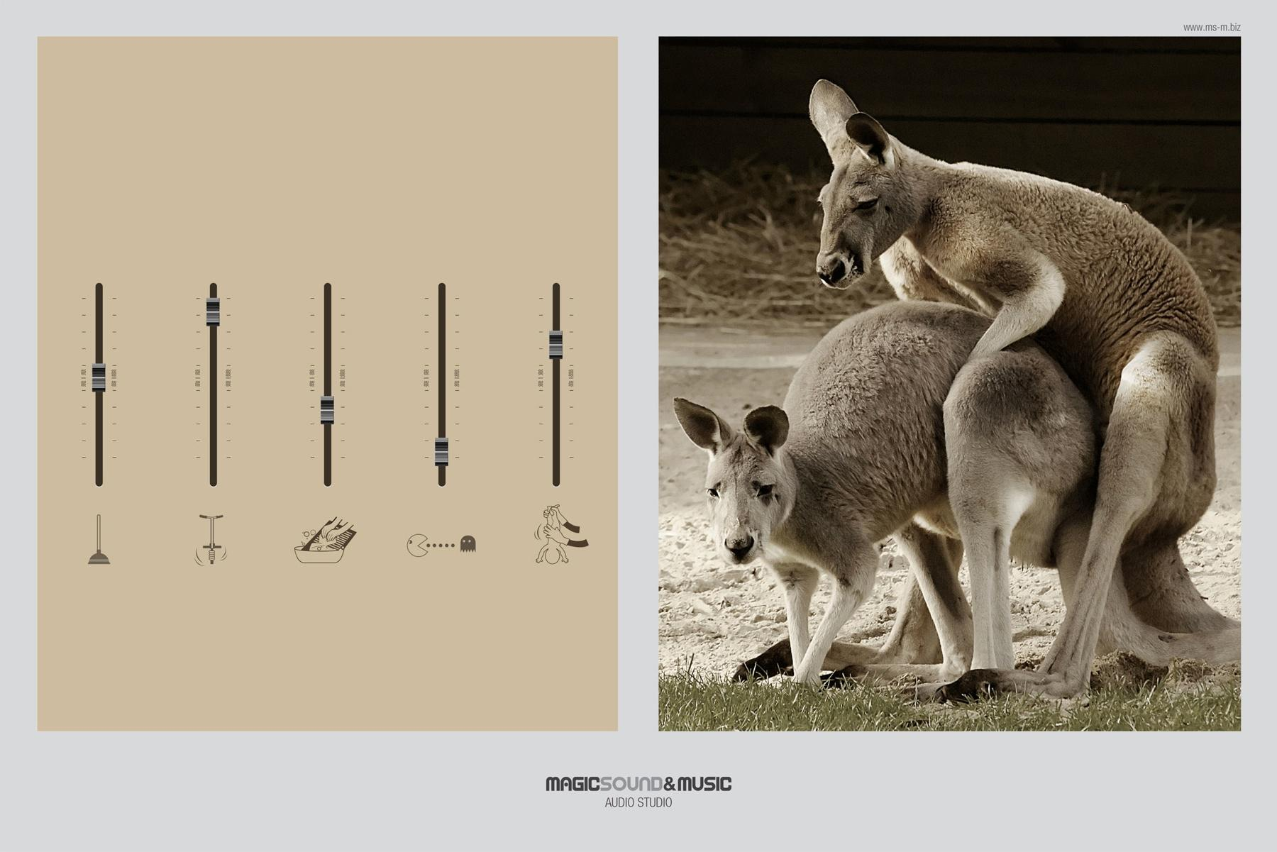 Magic Sound Print Ad -  Kangaroo