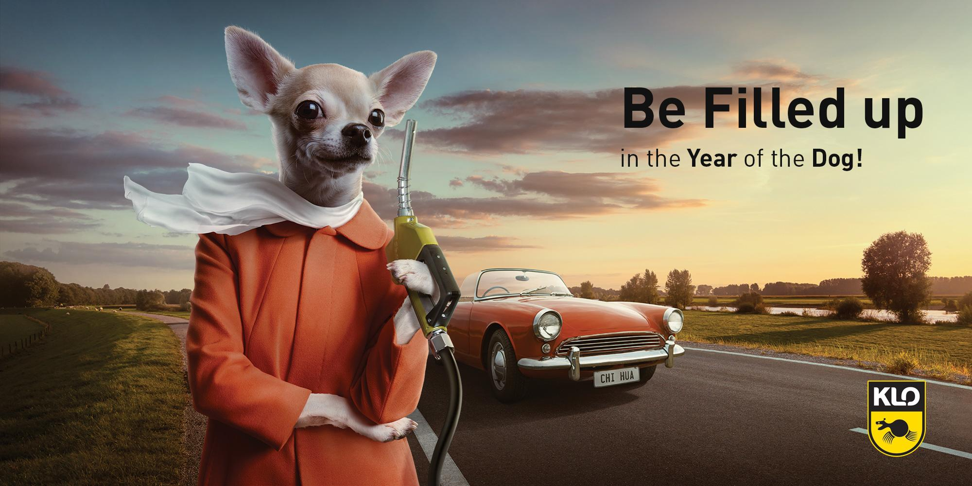KLO Print Ad - Dogs, 1