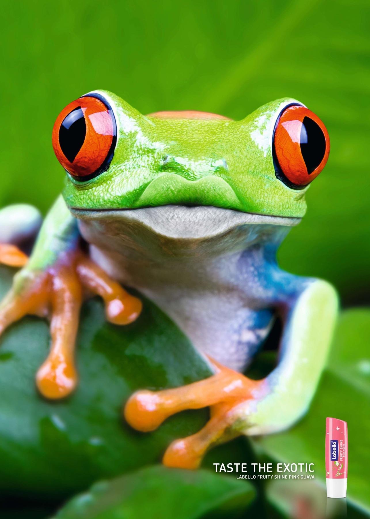 Labello Print Ad -  Frog