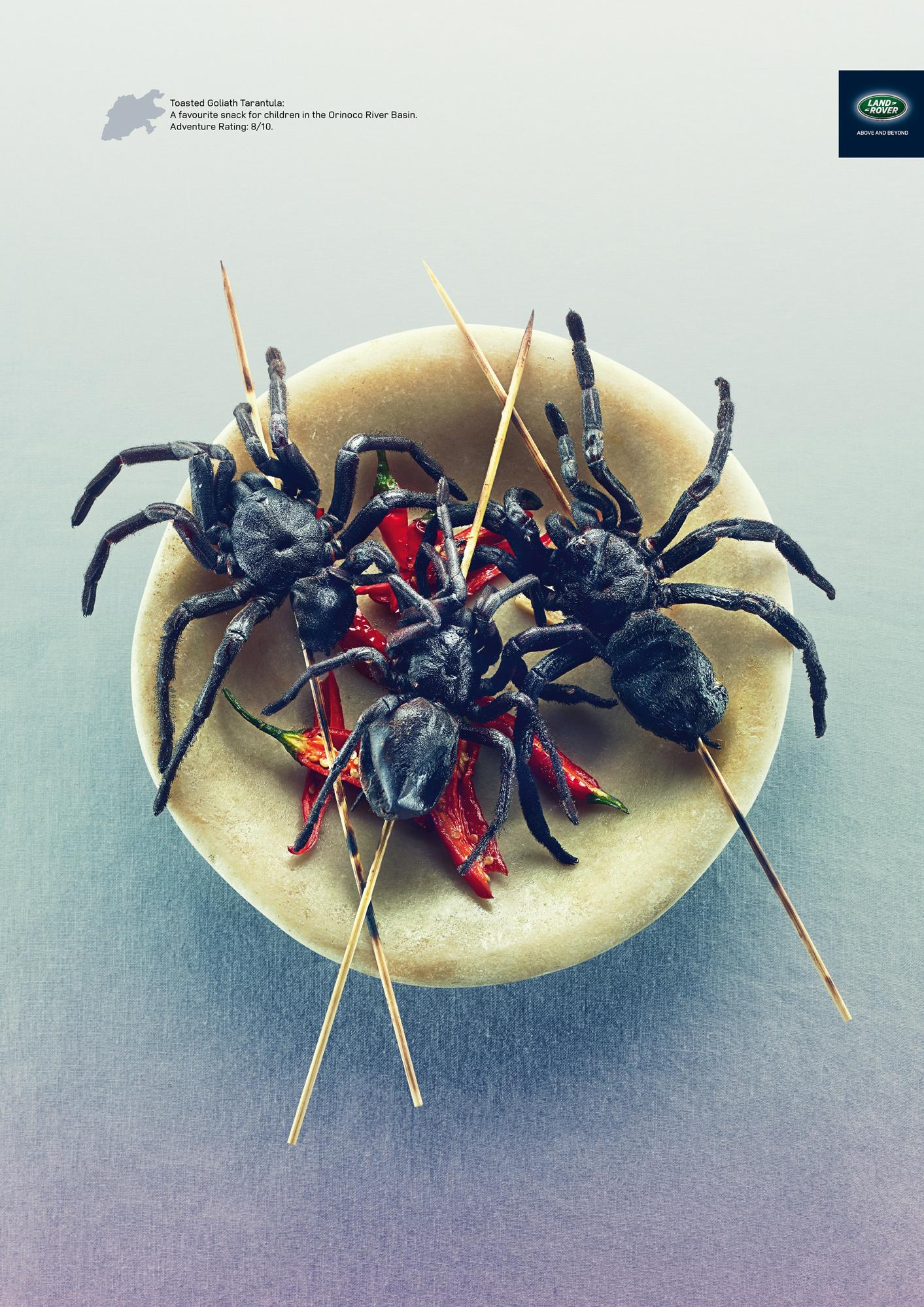 Land Rover Print Ad -  Eating Out, Goaliath Tarantula