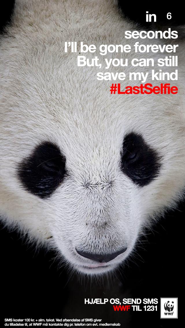 WWF Print Ad -  #LastSelfie, Panda
