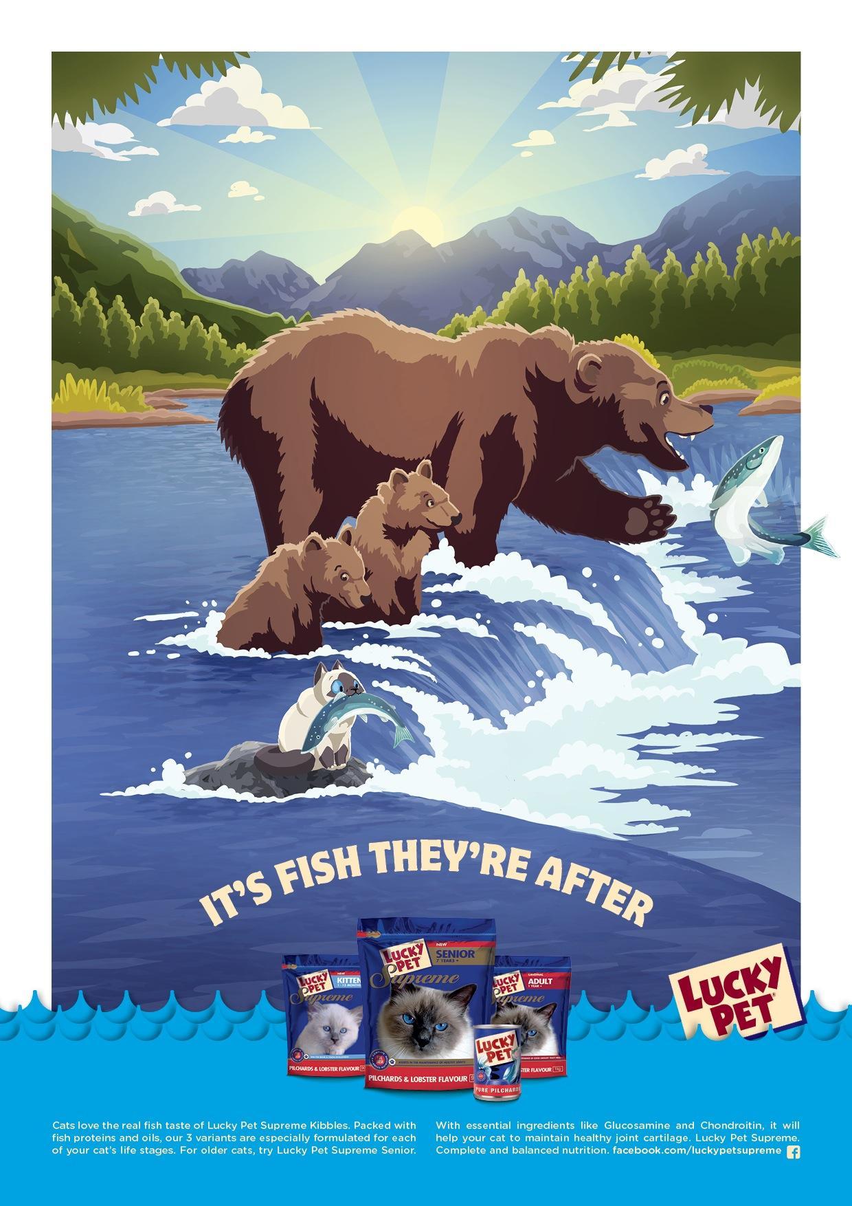 Lucky Pet Print Ad -  Bear