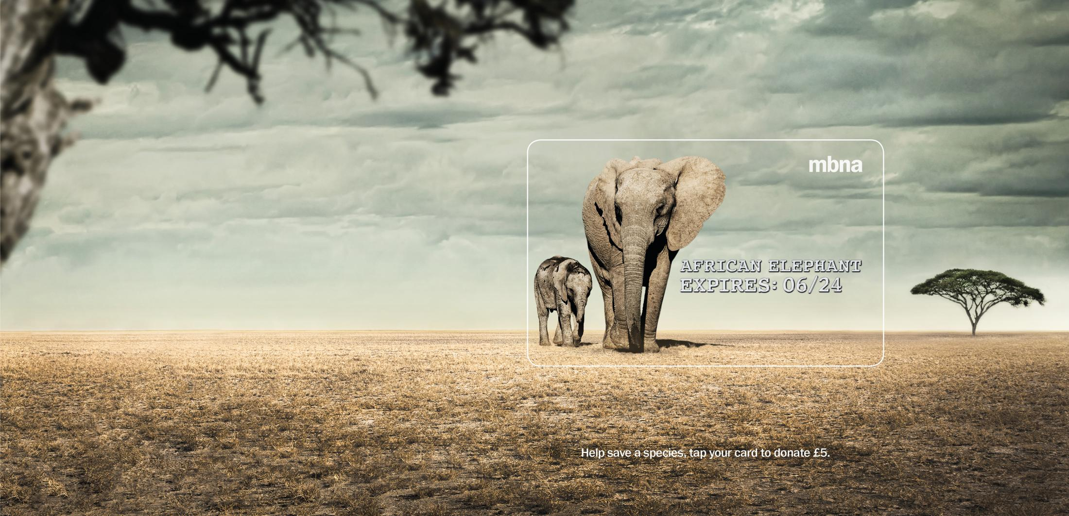 MBNA Outdoor Ad - Expires - Elephant