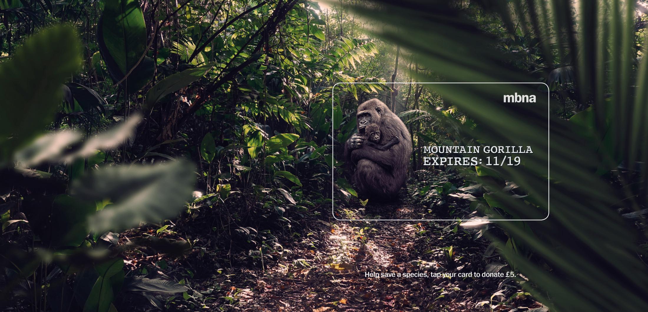 MBNA Outdoor Ad - Expires - Gorilla