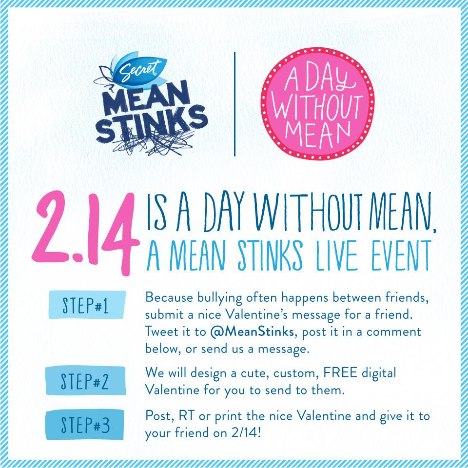 Secret Digital Ad -  Mean Stinks