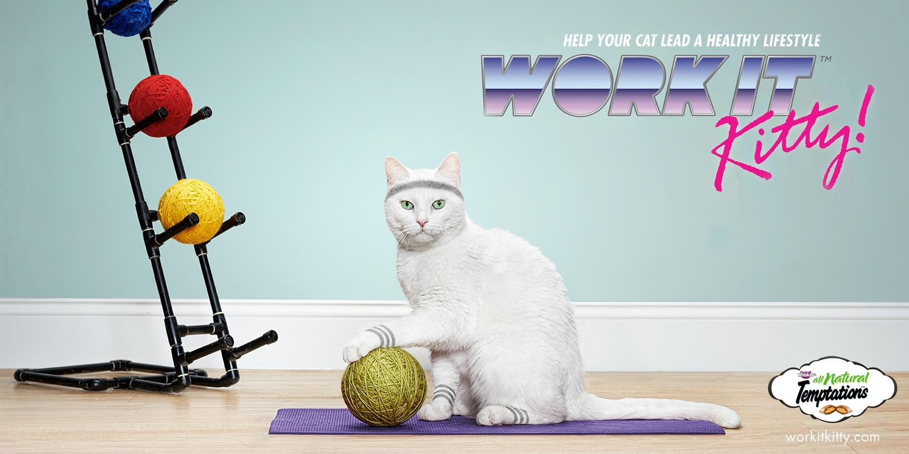 Temptations Print Ad -  Work it Kitty!, Medicine ball