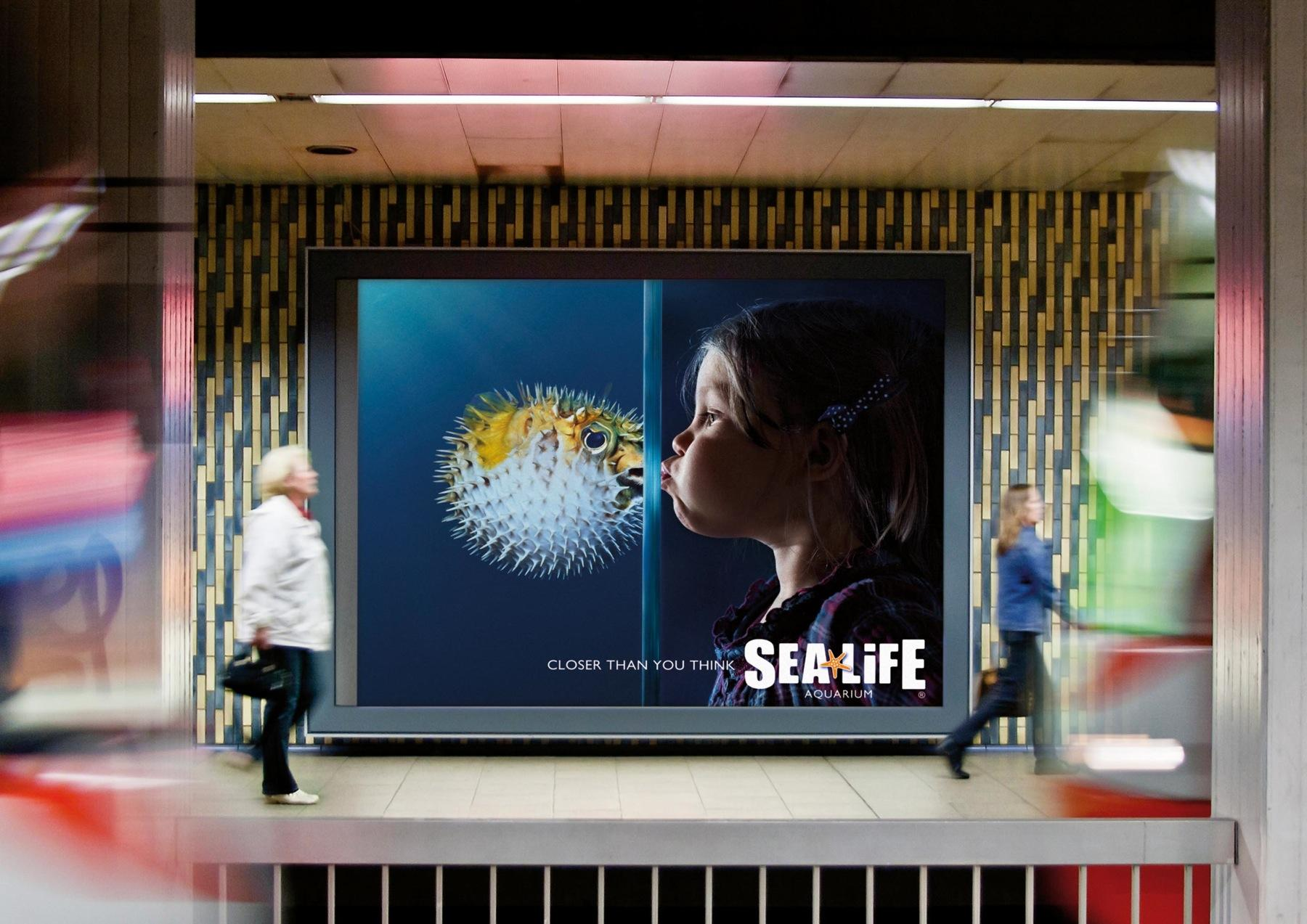 Sea Life Aquarium Outdoor Ad -  Pufferfish