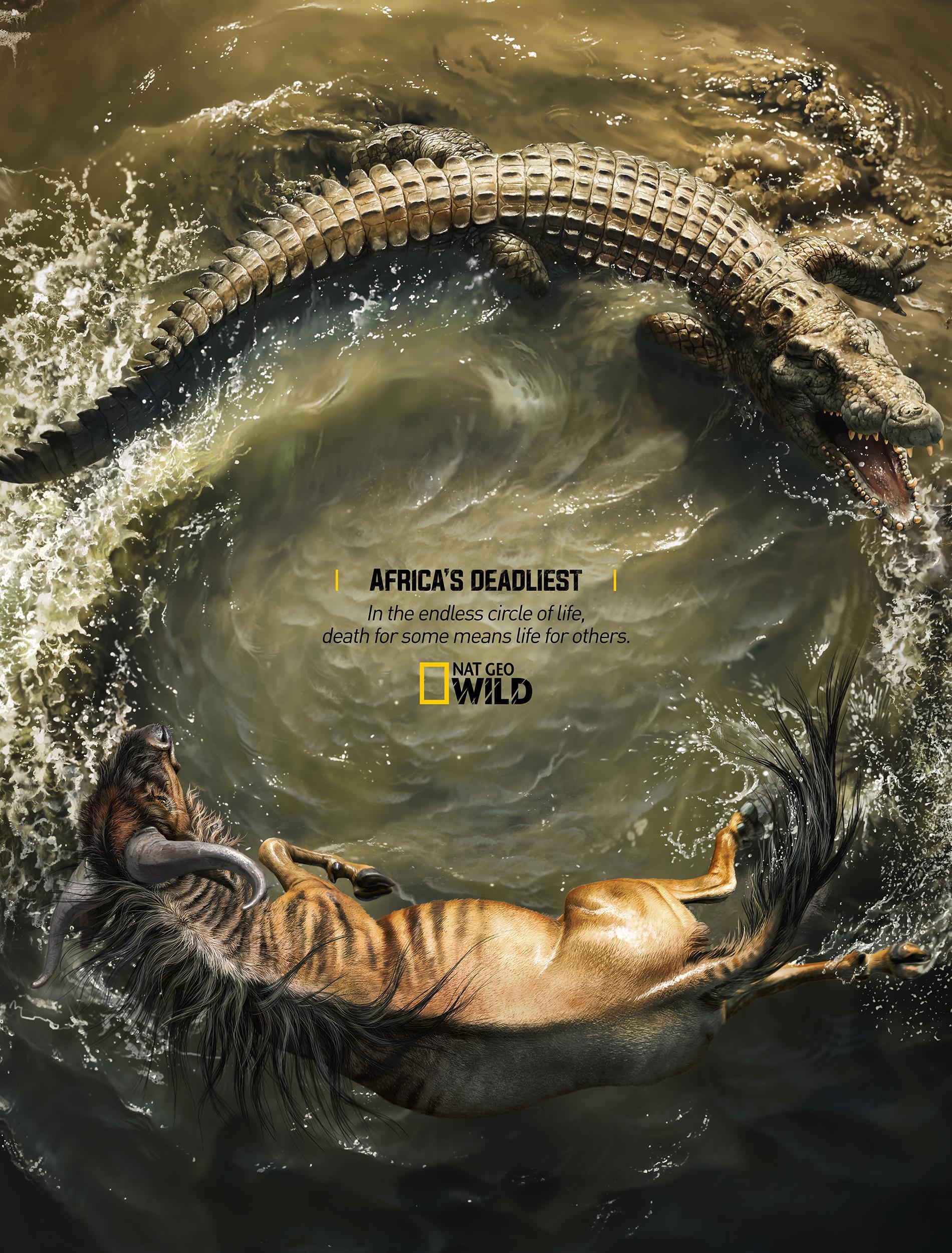 National Geographic Print Ad - Africa's Deadliest - Crocodile X Wildebeest