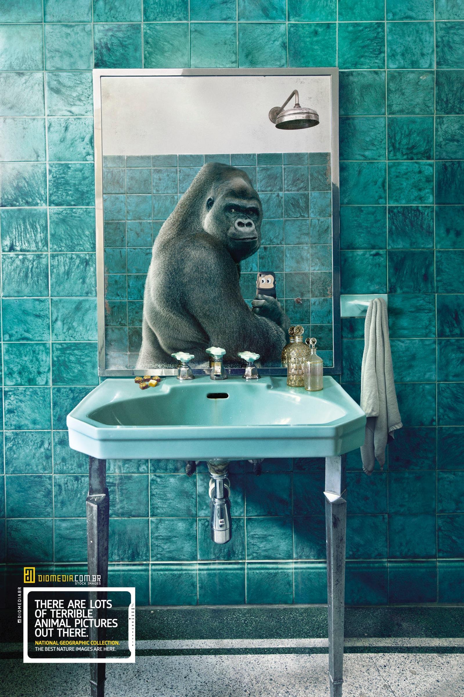 Diomedia Print Ad -  Gorilla
