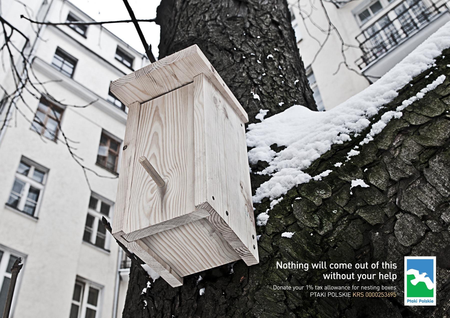 Ptaki Polskie Print Ad -  Box