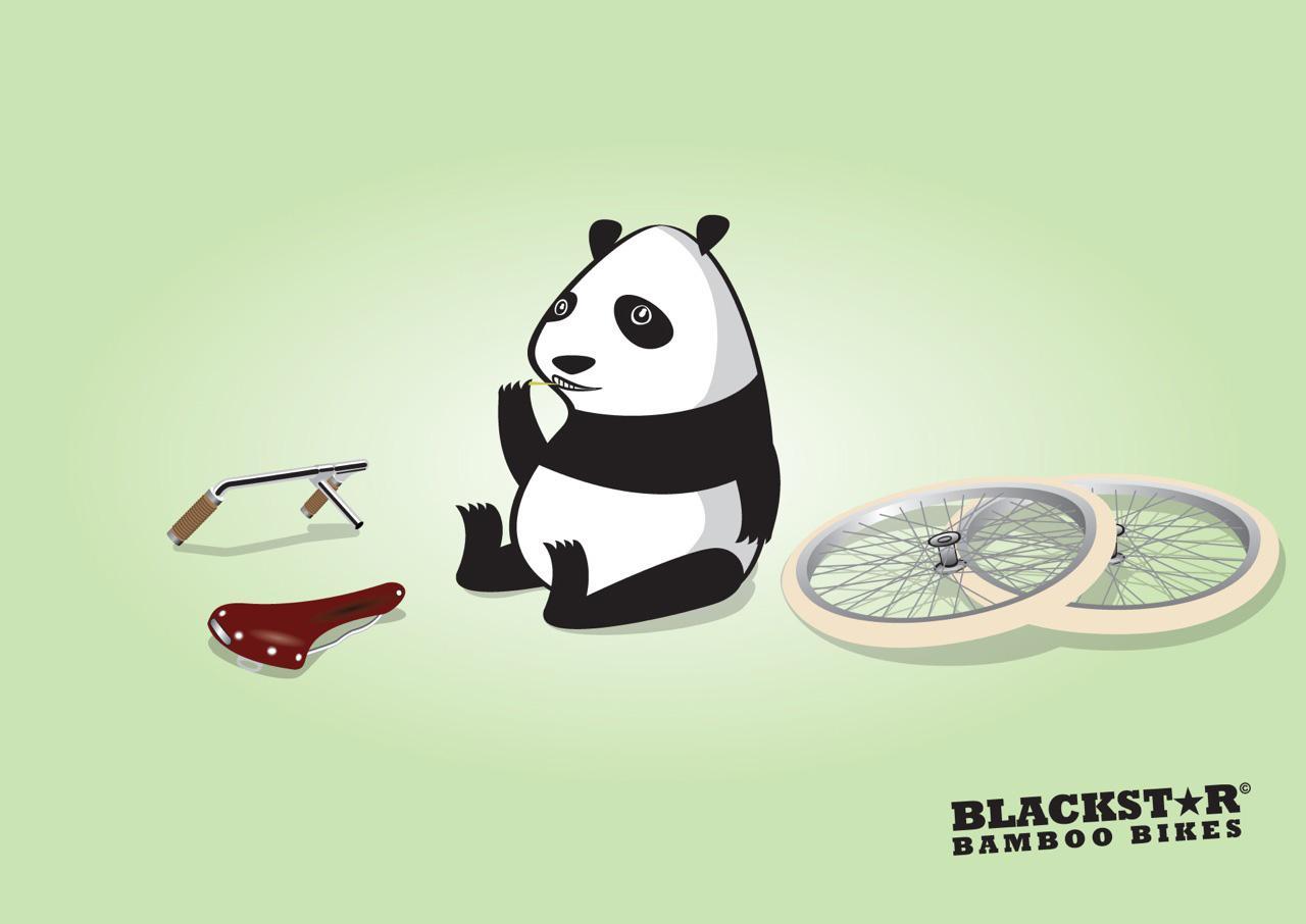 Blackstar Print Ad -  Panda