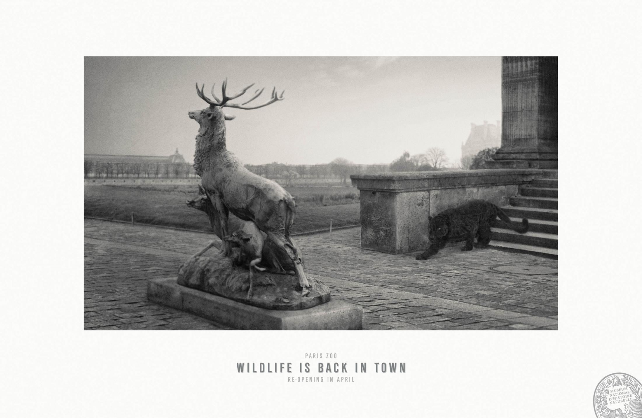 Paris Zoo Print Ad -  Wildlife is back in town, 4