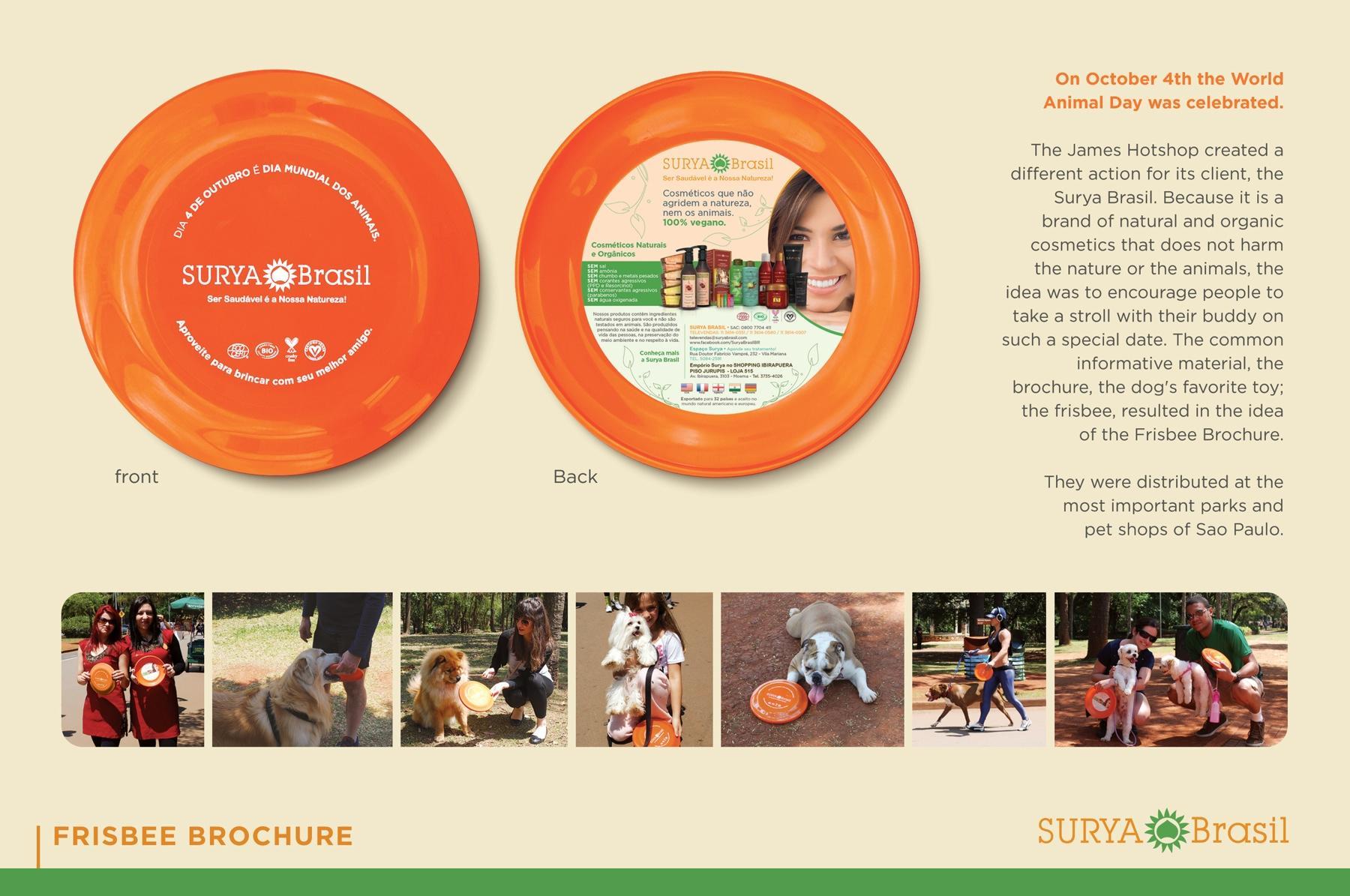 Surya Direct Ad -  Frisbee Brochure