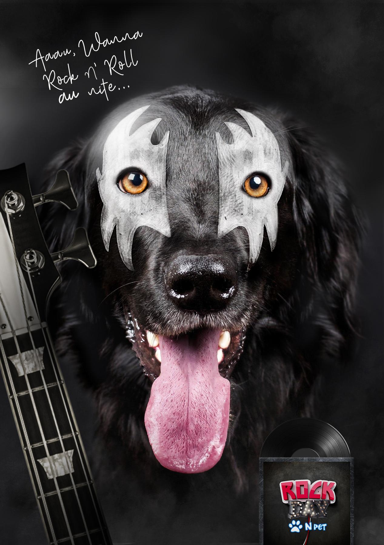N Pet Print Ad - Rock Day N Pet, 1