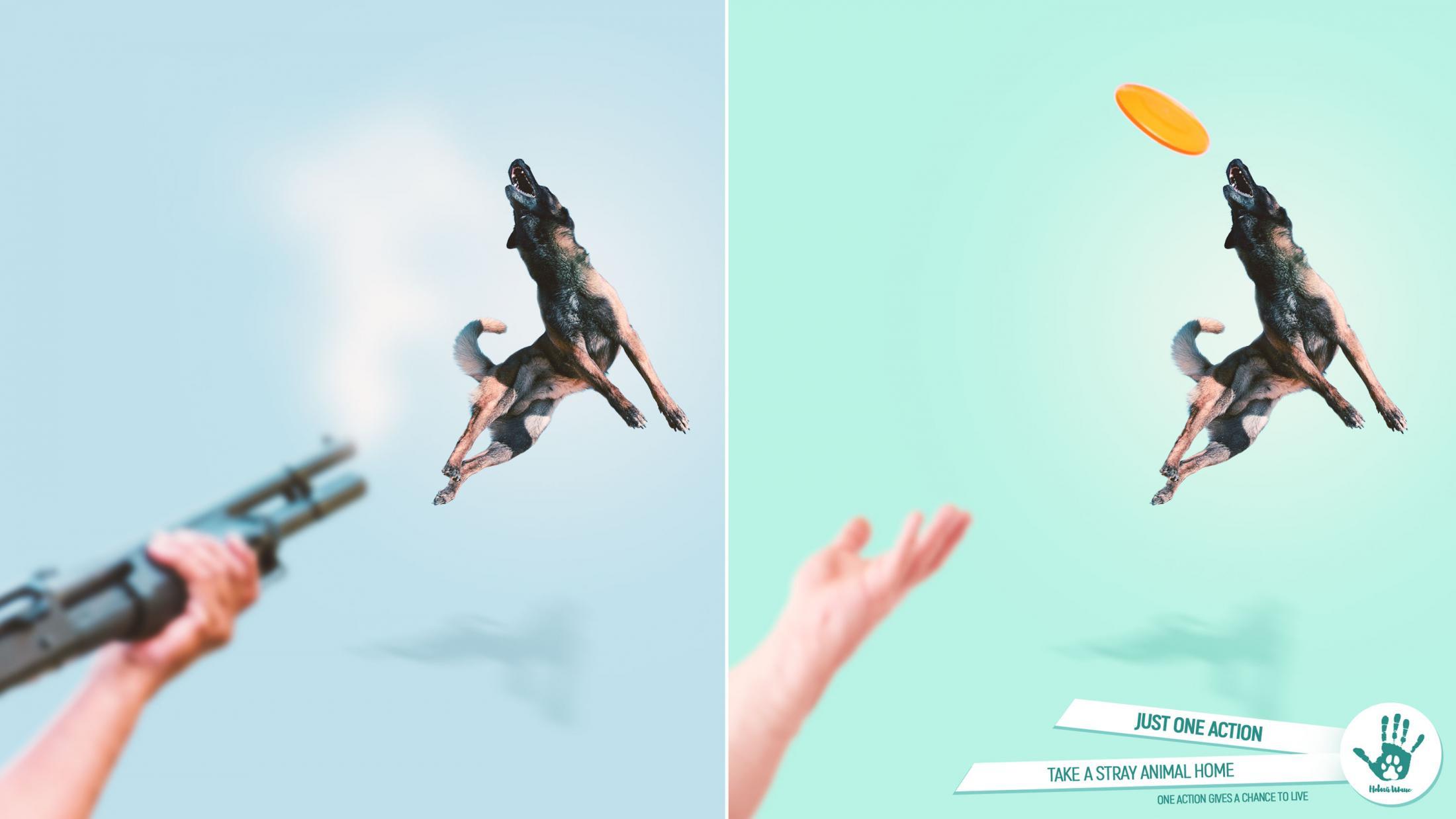 Novy Shans Print Ad - Shelter for homeless animals, 2