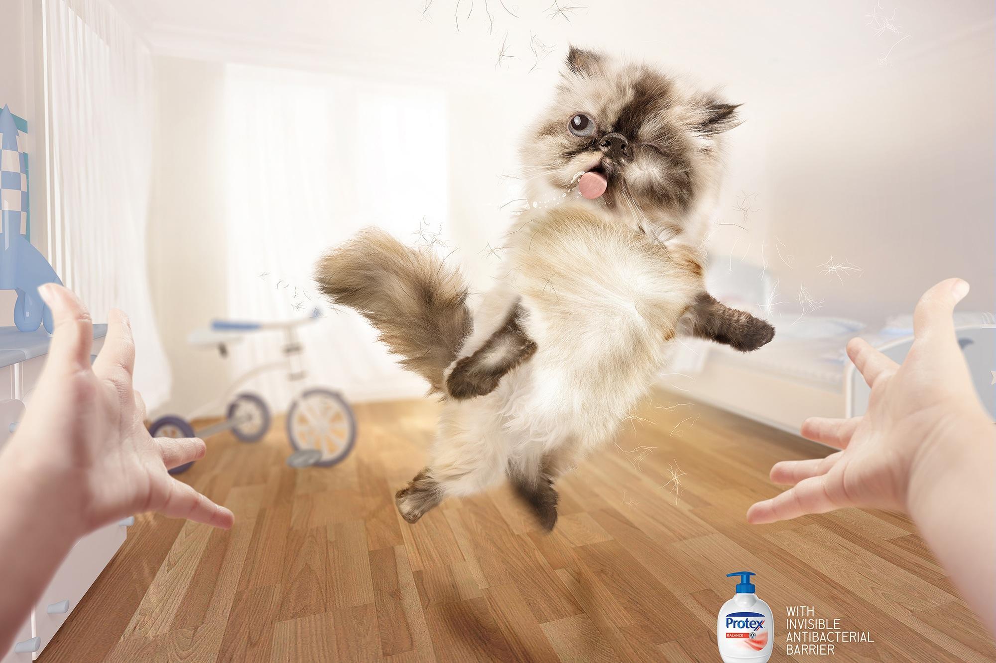 Protex Print Ad -  Cat