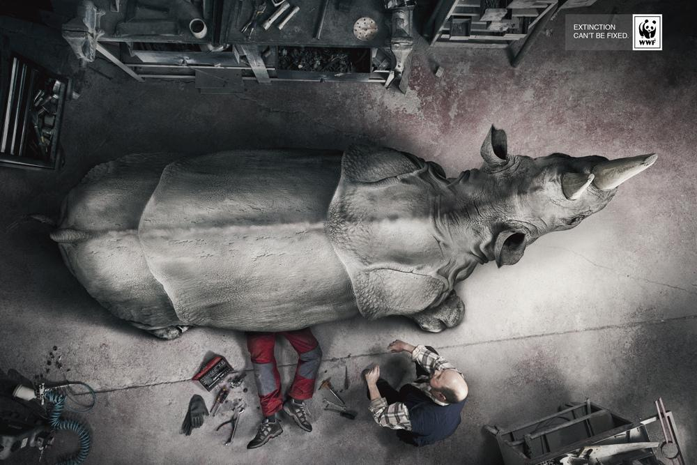 WWF Print Ad -  Extinction can't be fixed, Rhino