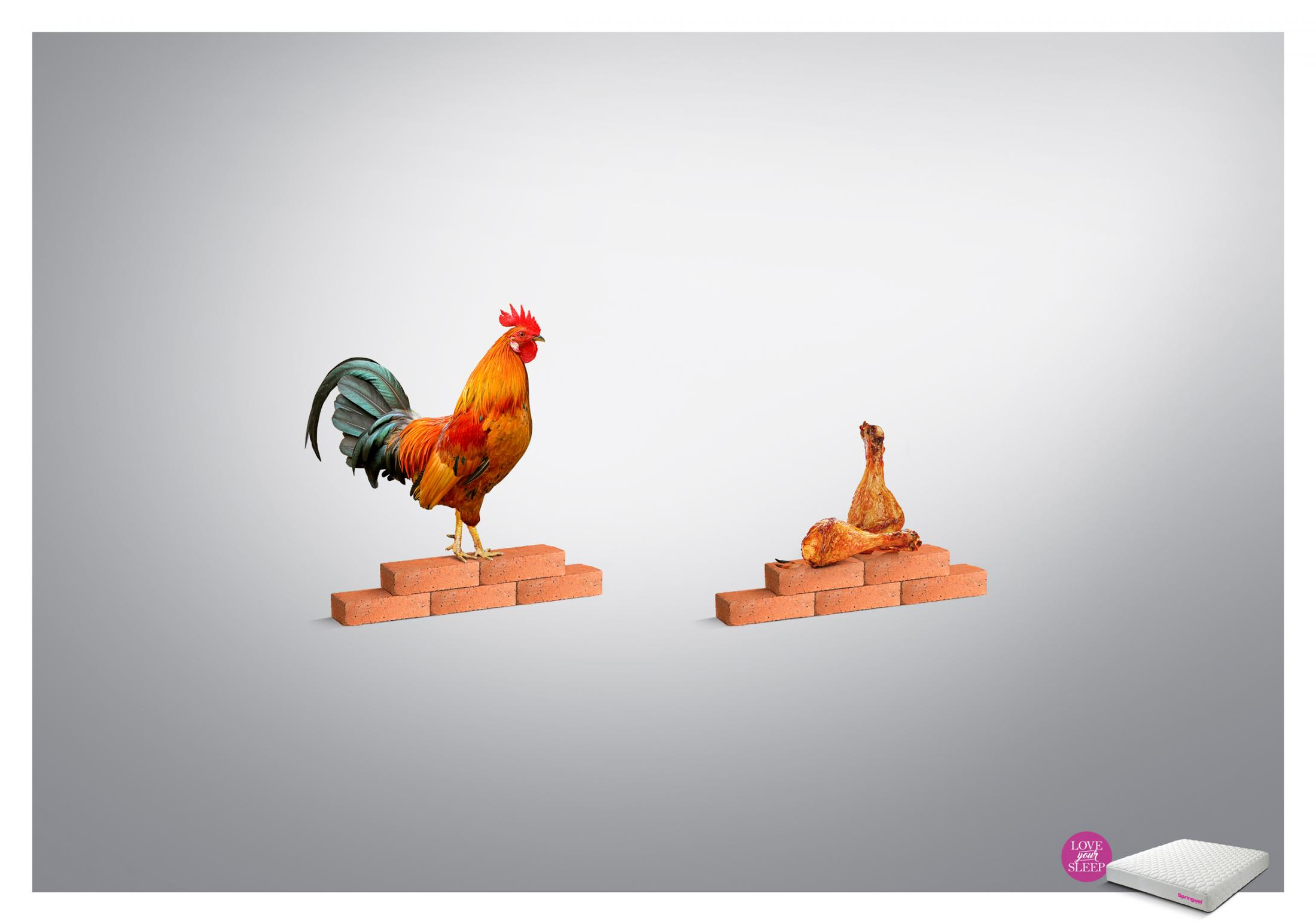 Springwel Print Ad - Love your Sleep - Rooster