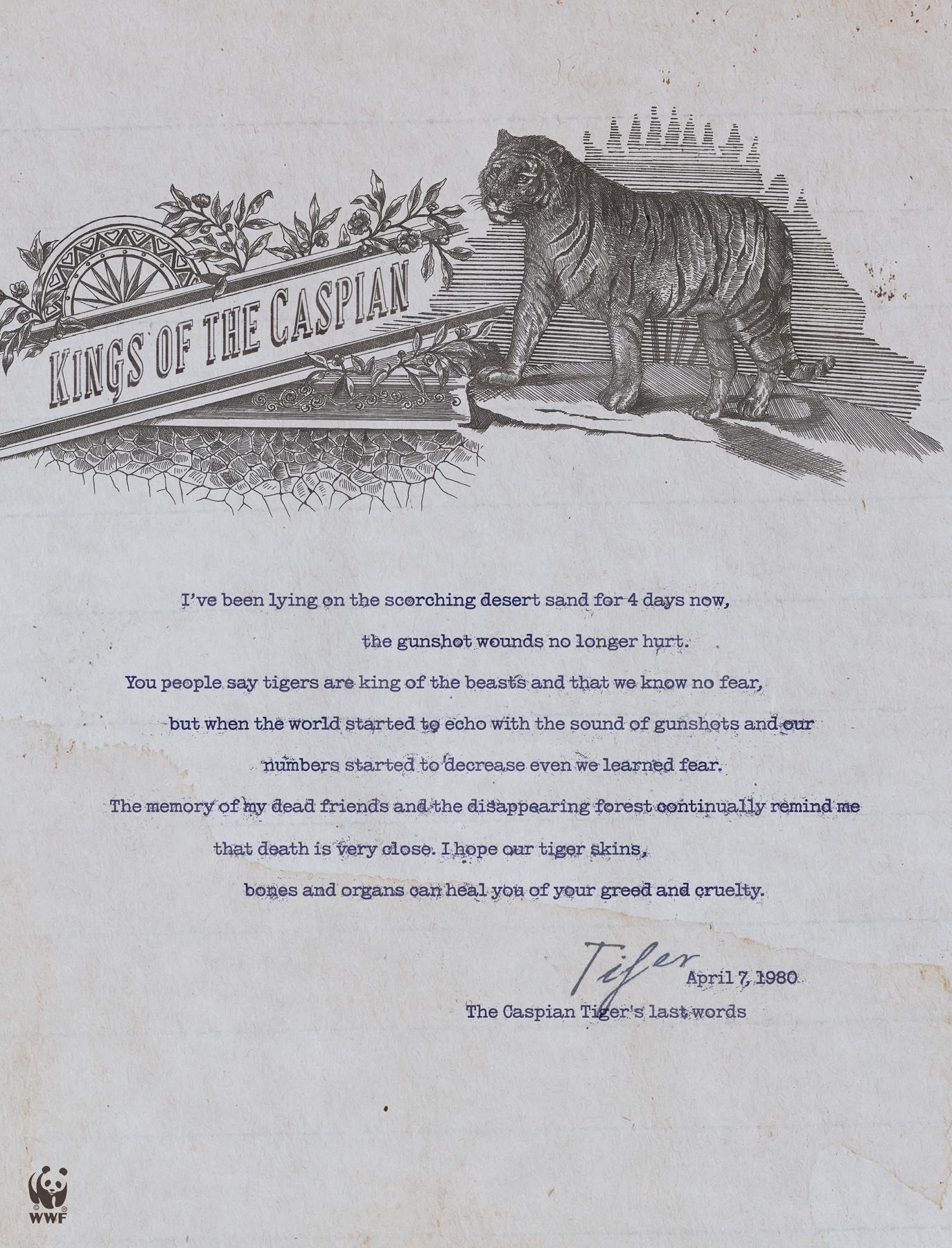 WWF Print Ad -  Last Words of the Caspian Tiger