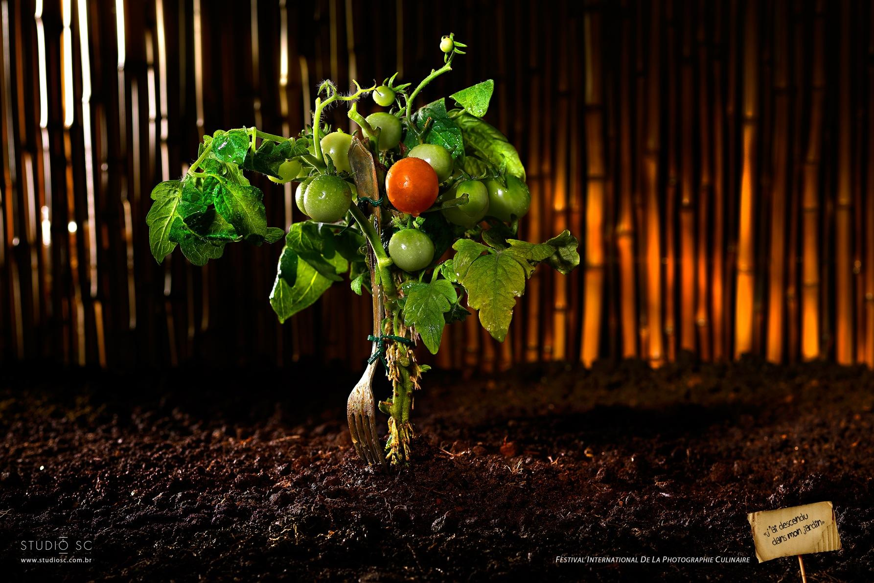 International Food Photography Festival Print Ad -  I went down to my garden, 2