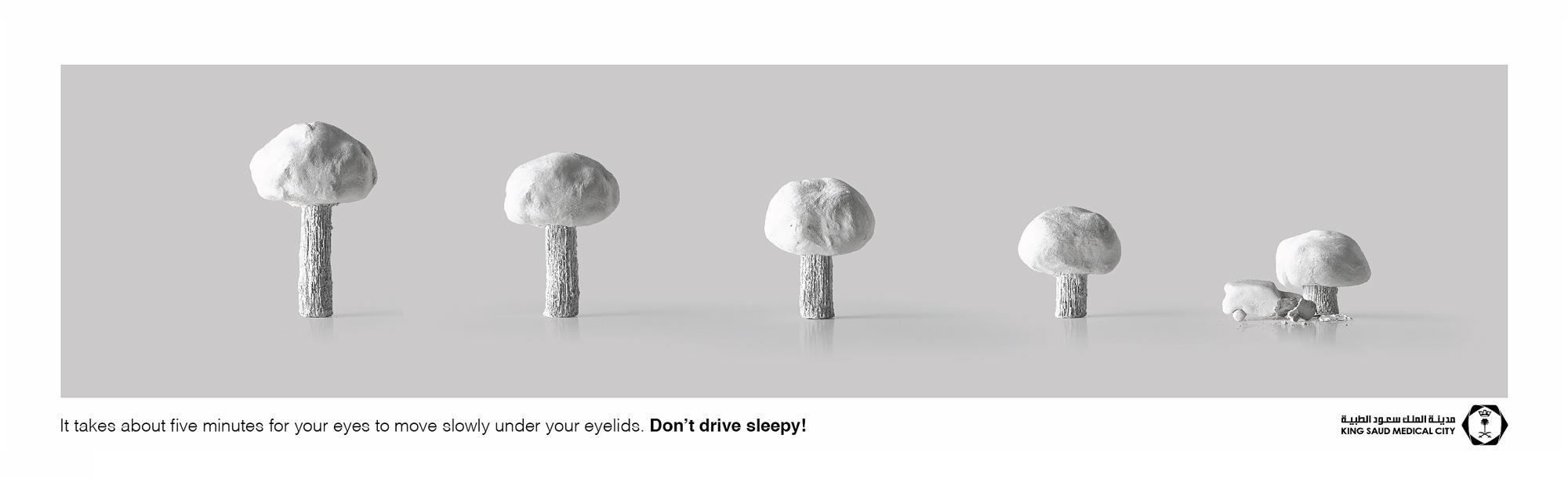 KSMC Print Ad -  Trees