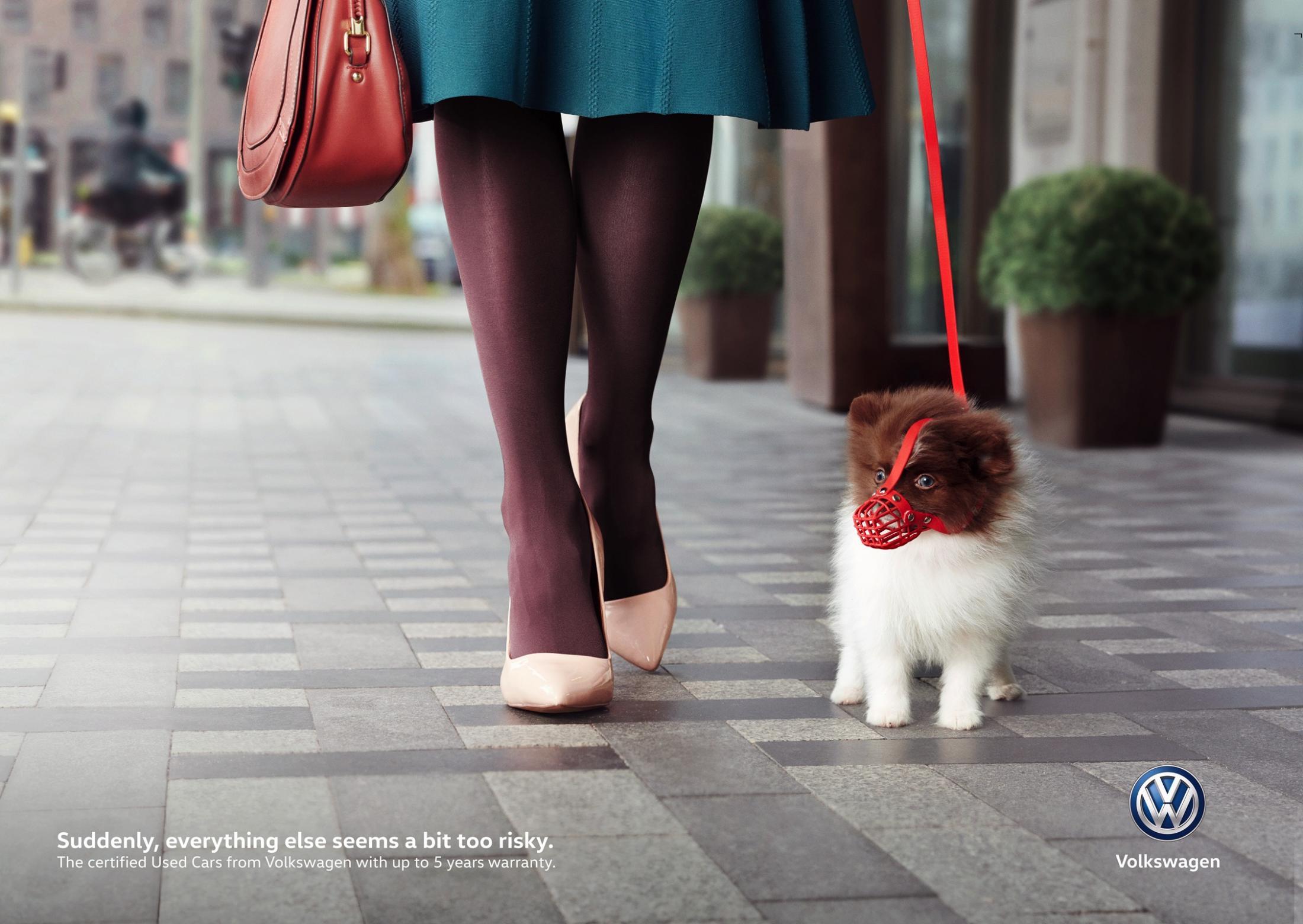 Volkswagen Print Ad - A Bit Too Risky - Puppy