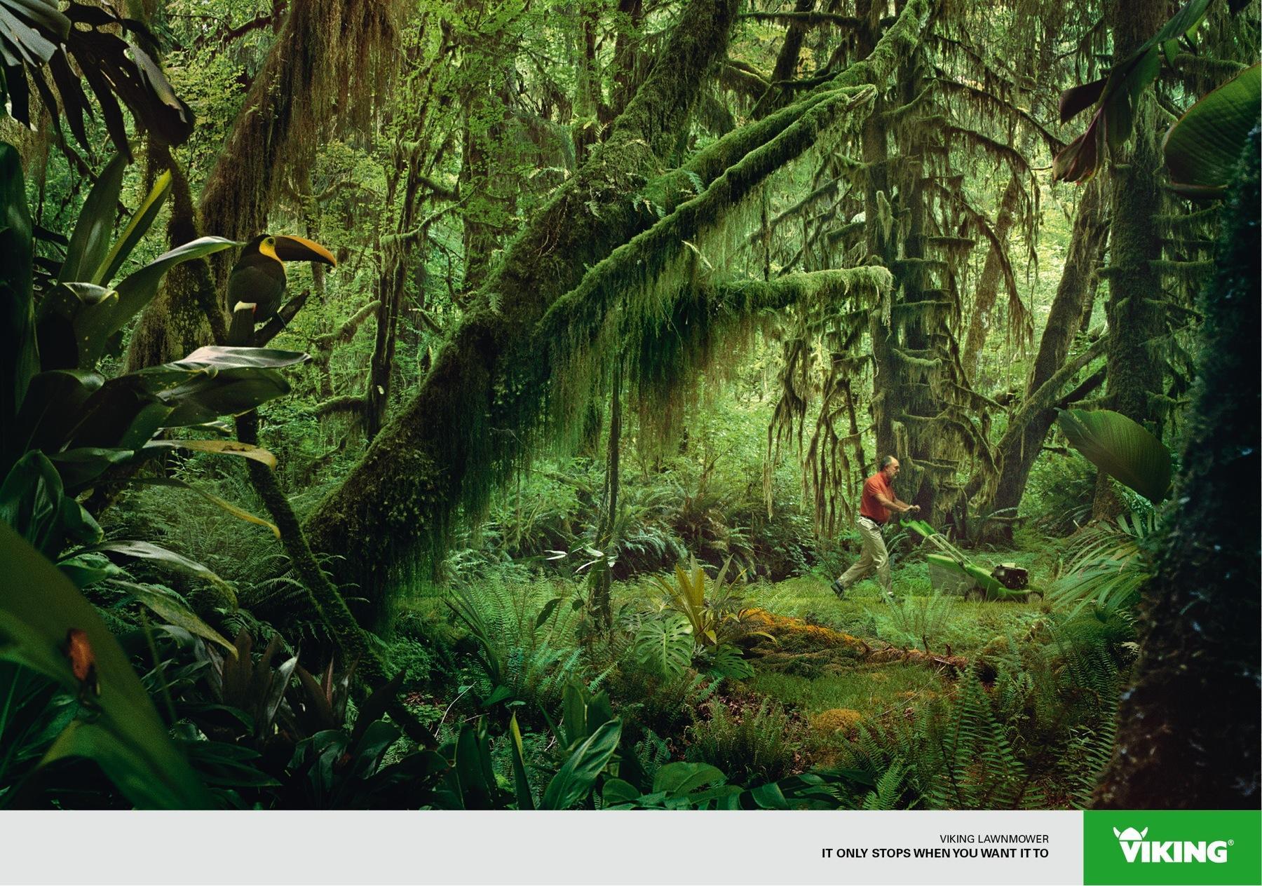 Viking Print Ad -  Jungle
