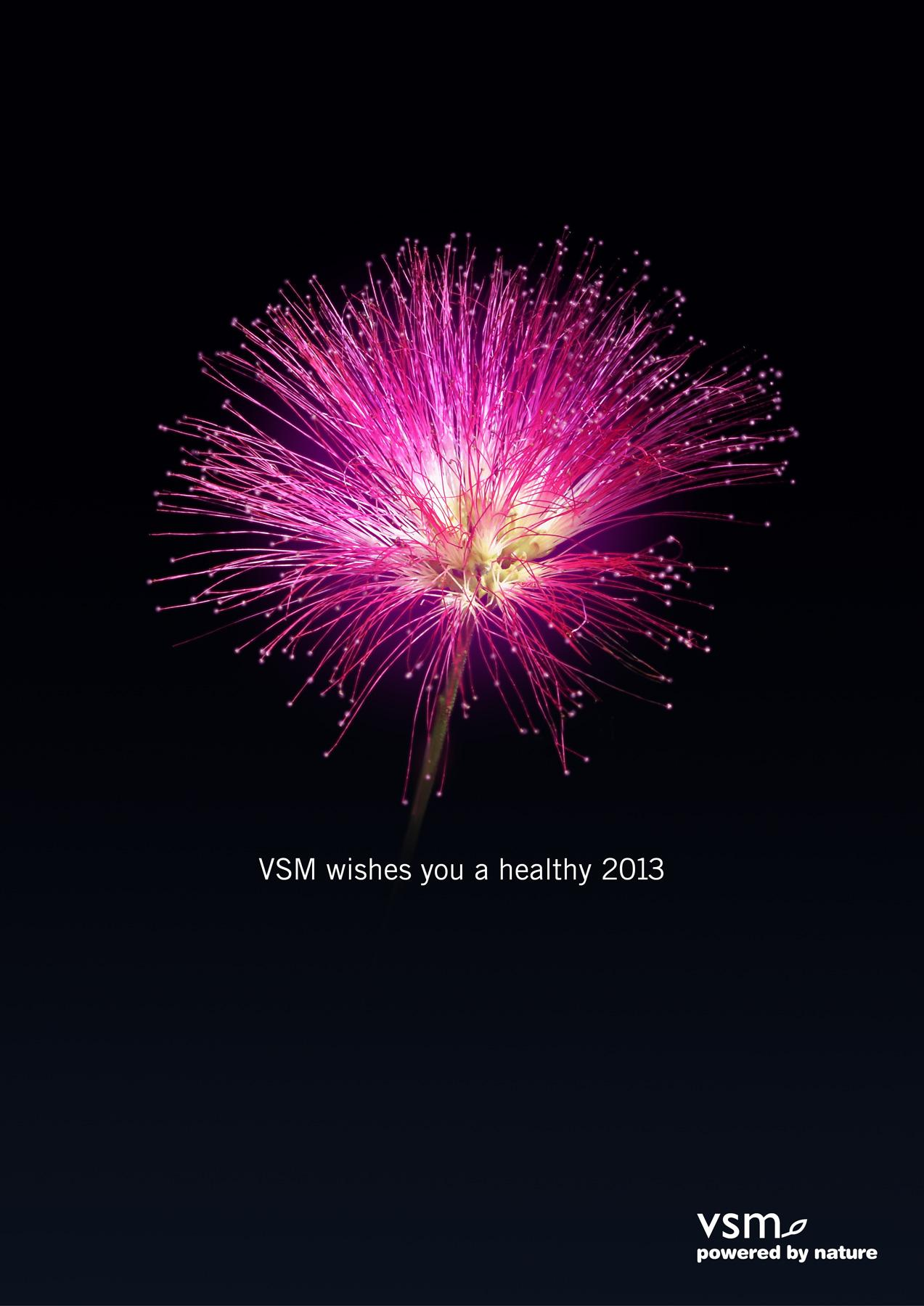 VSM Outdoor Ad -  Nature's firework, 1