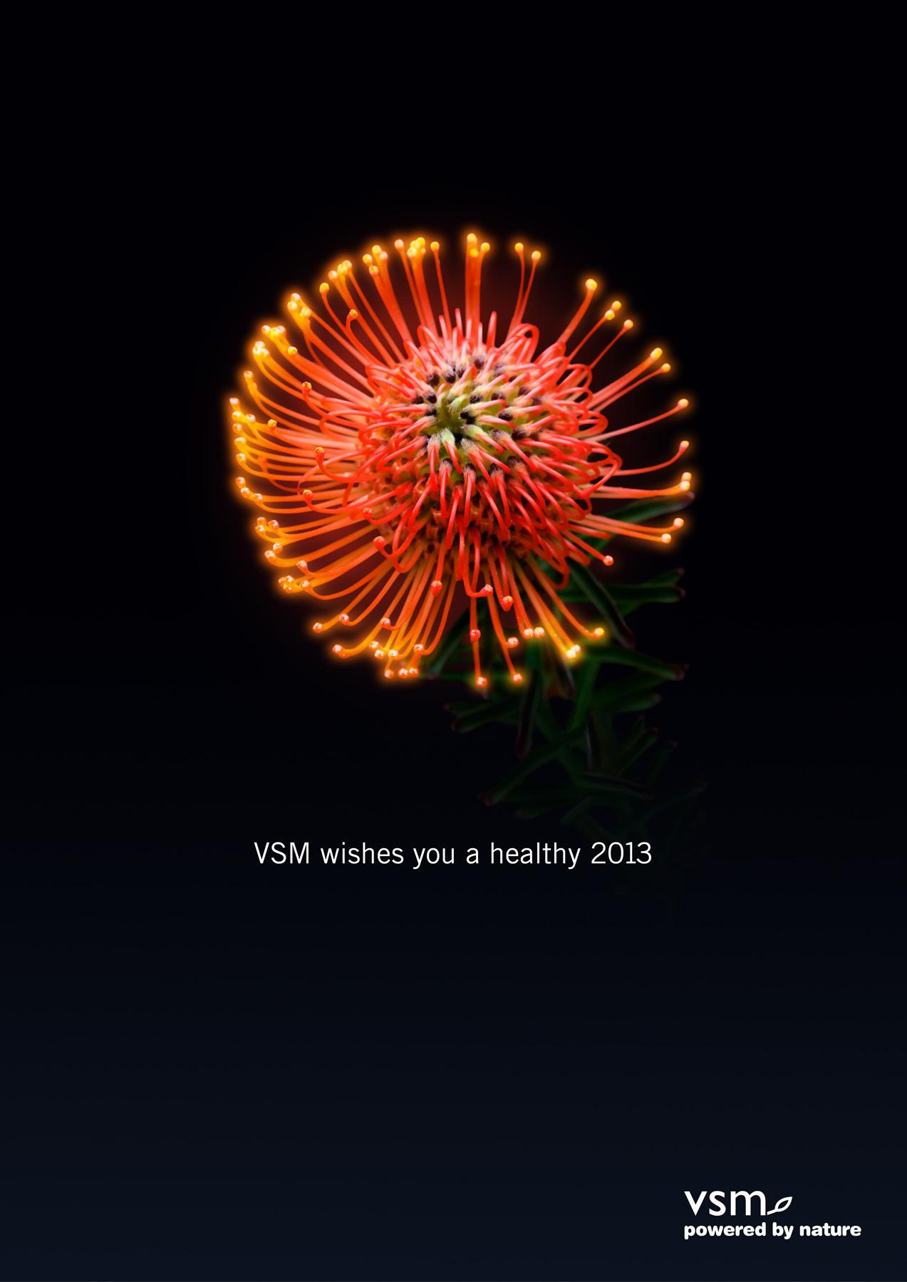 VSM Outdoor Ad -  Nature's firework, 2