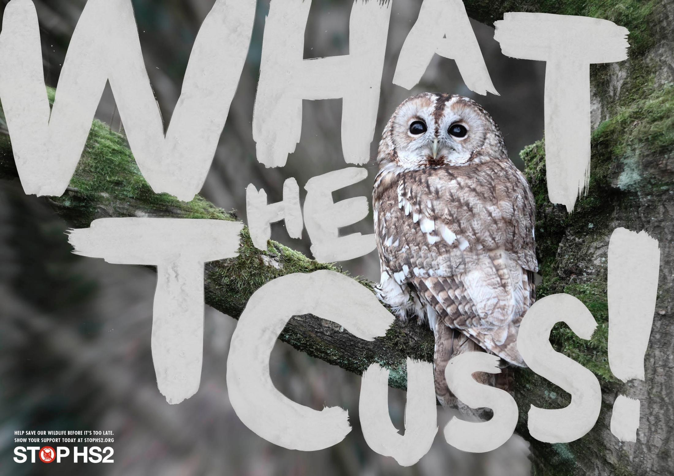 Stop HS2 Print Ad -  Owl