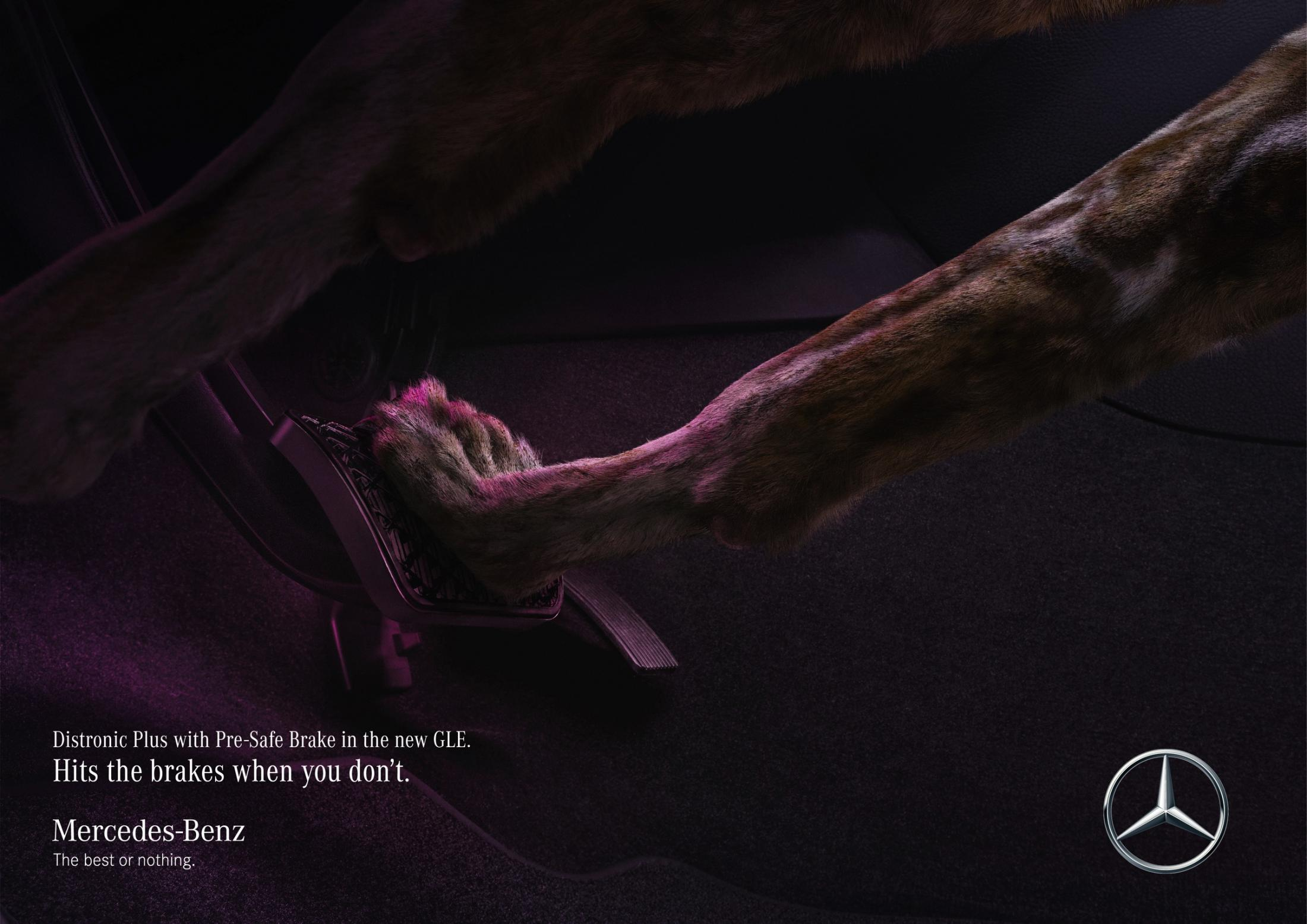 Mercedes Print Ad - Wild dog saves wild dog
