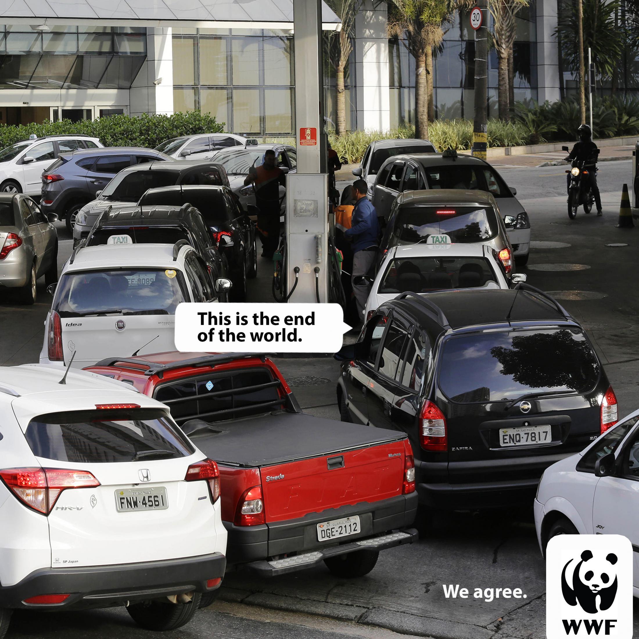 WWF Print Ad - We Agree