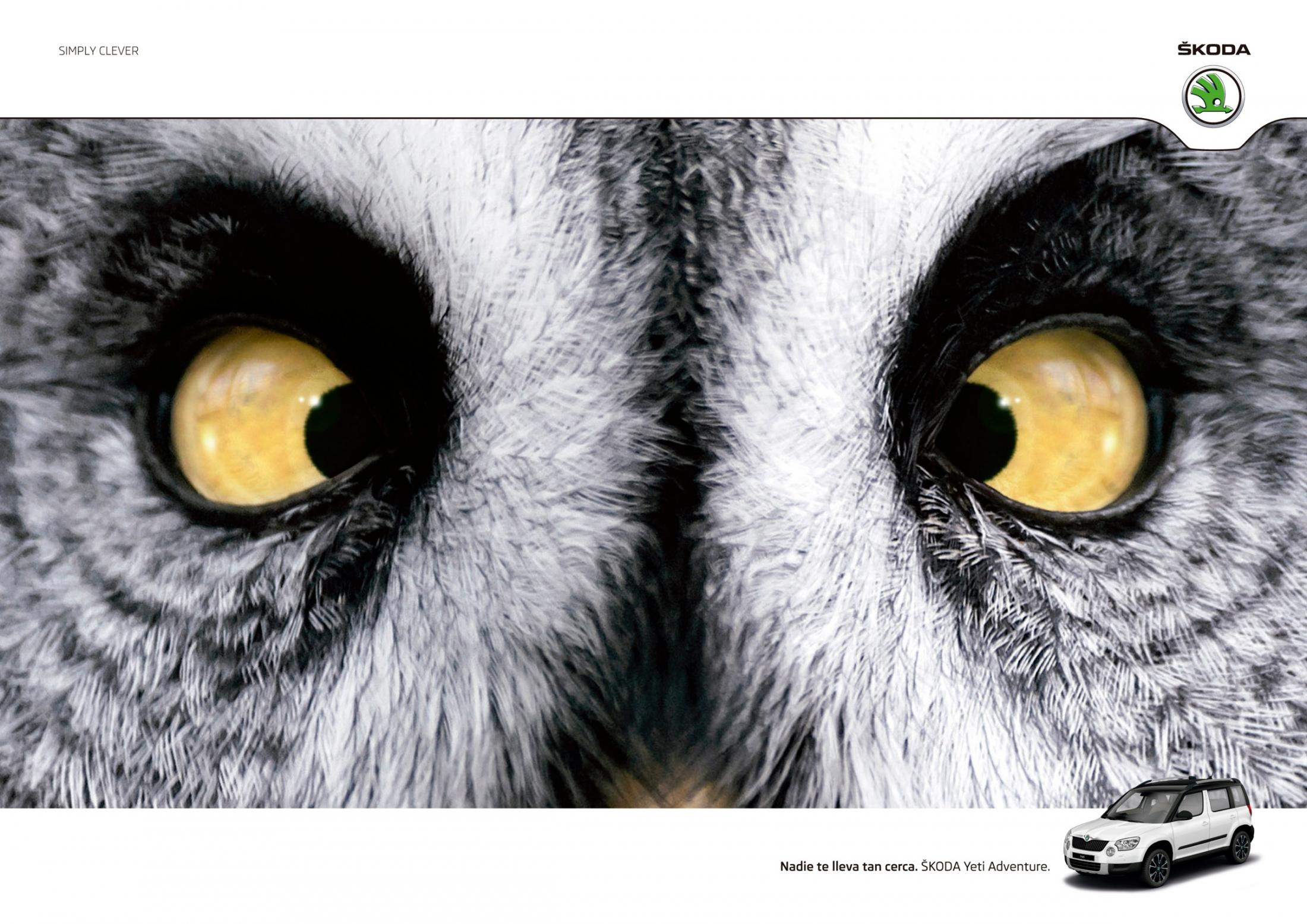Skoda Print Ad -  Owl