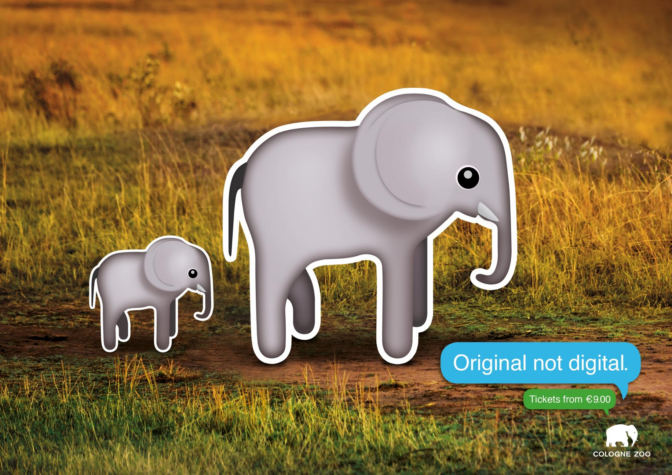 Cologne Zoo Print Ad - Elephants