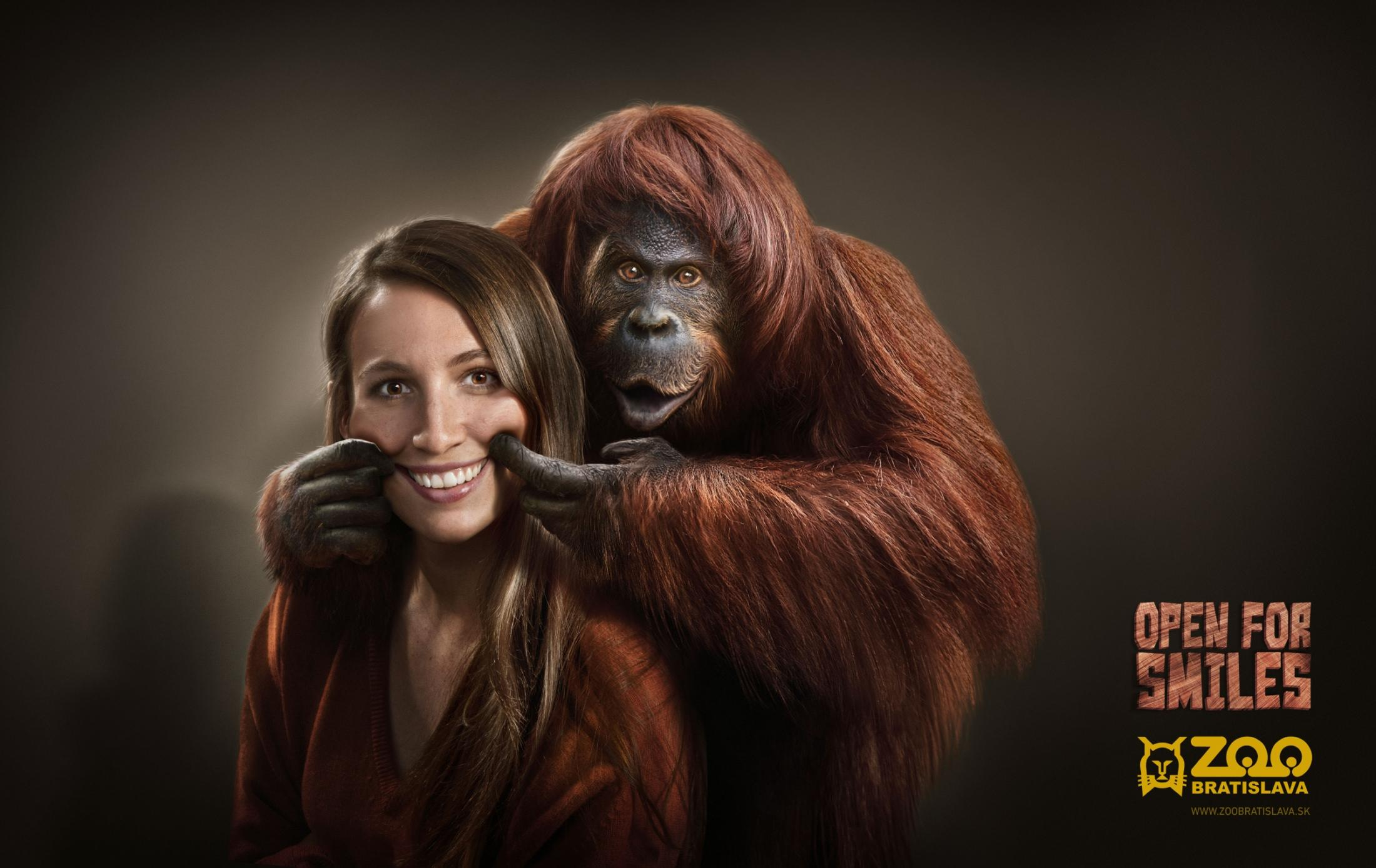 Zoo Bratislava Print Ad -  Orangutan