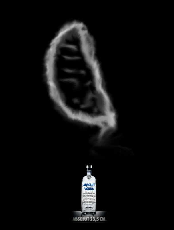 ABSOLUT-Project