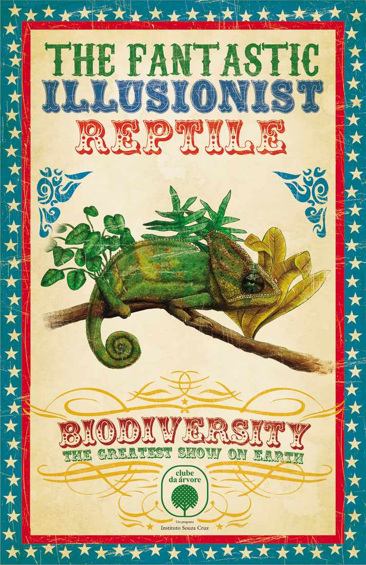 Biodiversity. The Greatest show on earth.