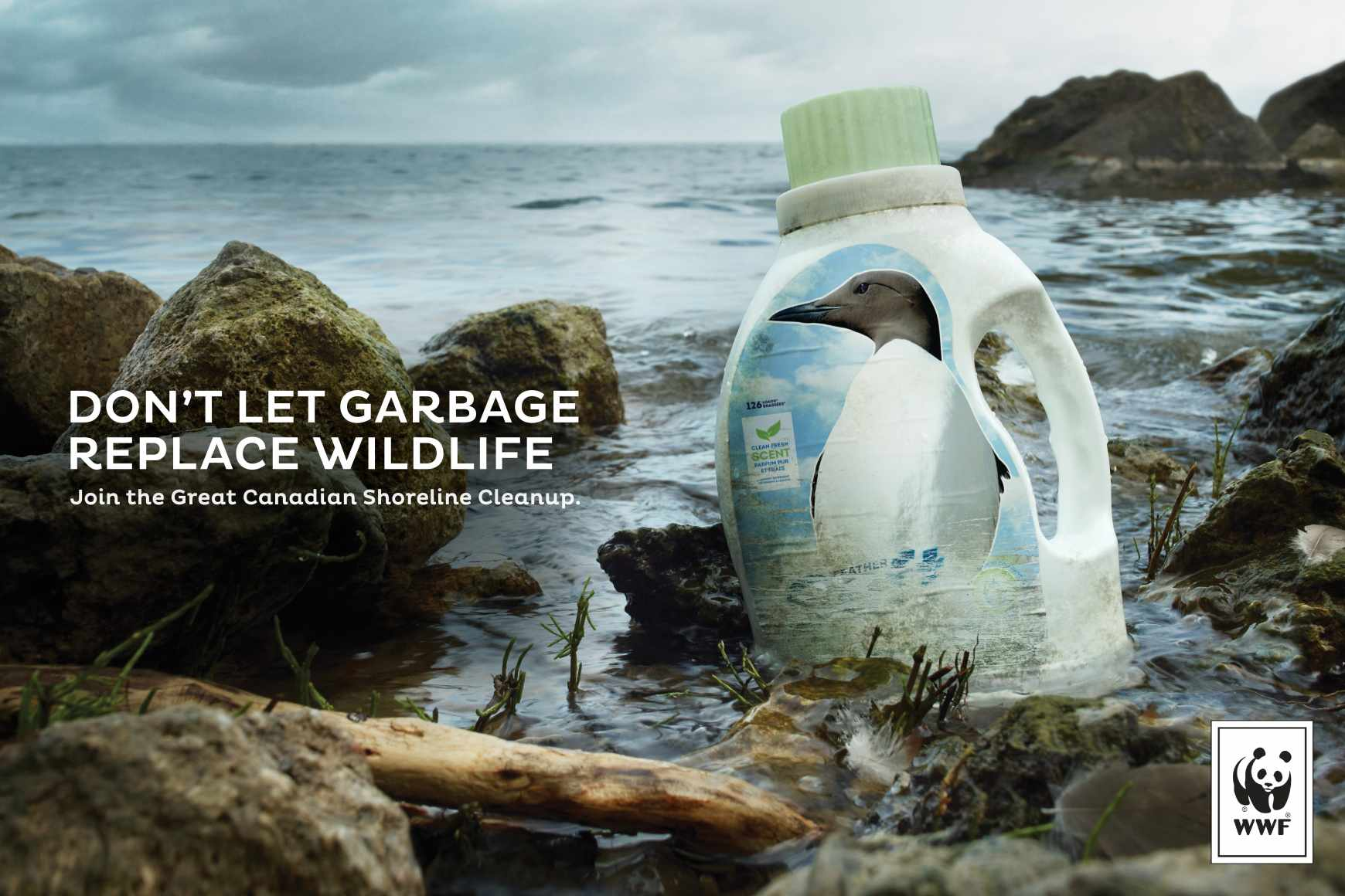 WWF Print Ad - Murre