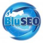bluseo's picture