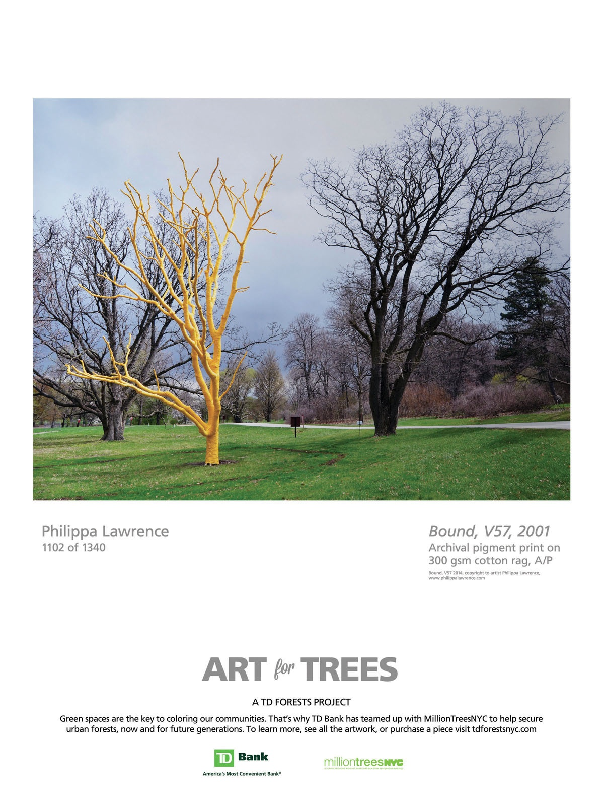 TD Bank Outdoor Advert By Tierney: Art for Trees - Philippa Lawrence ...